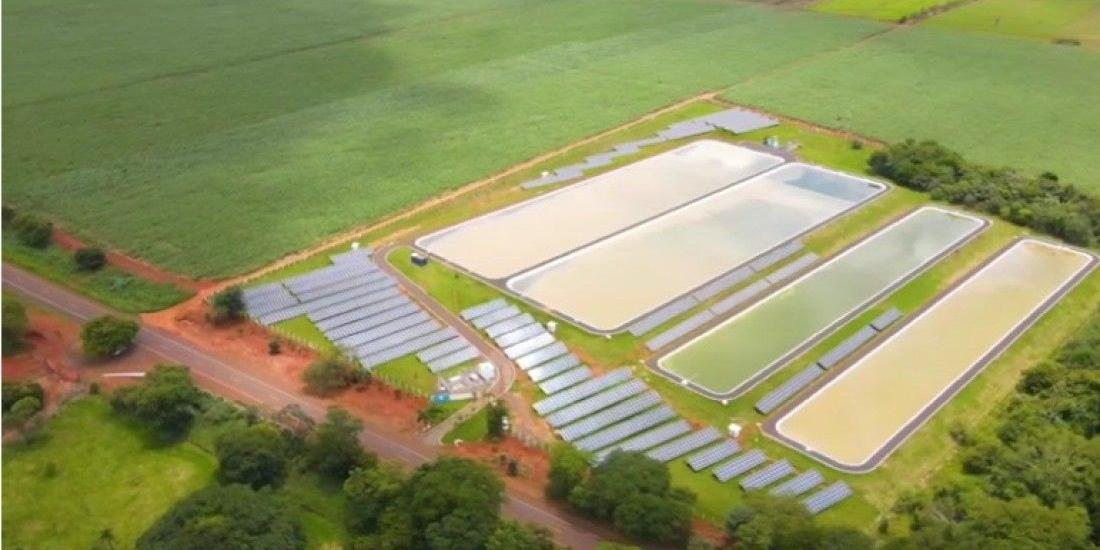 Usina de geração de energia solar criada pela Sabesp em Orindiúva (Reprodução/YouTube)