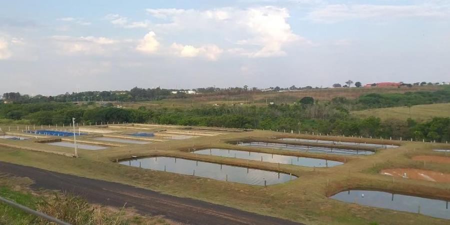 Tanques escavados do Instituto da Pesca, em Rio Preto (Divulgação)