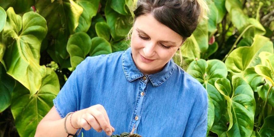 Gabriela Heringer, do Studio Lily, ensina segredos para criar um verdadeiro 'bercário' de plantas