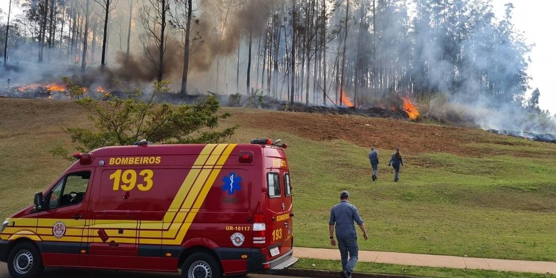 Aeronave caiu em uma área de mata em Piracicaba, interior de São Paulo (Divulgação/Corpo de Bombeiros)