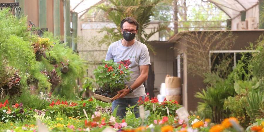 Douglas Zaneti investiu em novo nicho: a venda e o plantio de árvores frutíferas adultas (Guilherme Baffi 14/9/21)